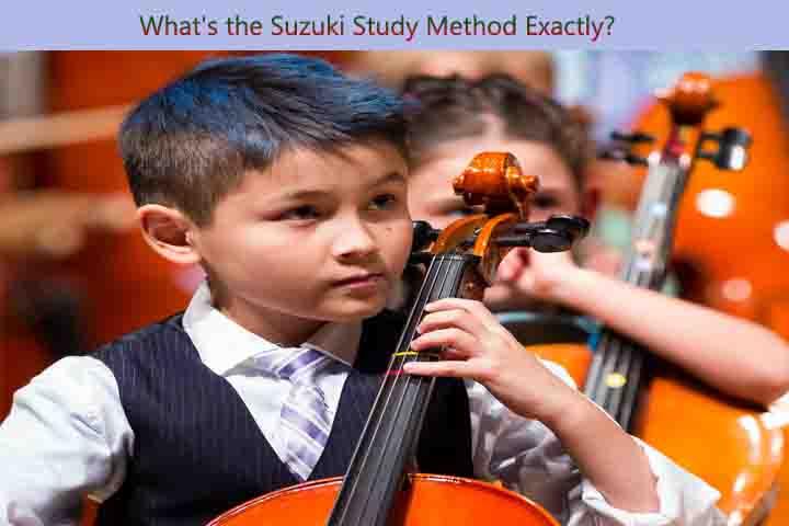 suzuki method,suzuki,music education (field of study),teaching method (field of study),the suzuki method...,suzuki method teacher,suzuki violin method,suzuki çello method