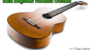 best acoustic guitar,acoustic guitar,best beginner acoustic guitar,best acoustic guitars for beginners, best beginner guitar,best cheap acoustic guitars,best acoustic guitars 2020, best guitar for beginners,
