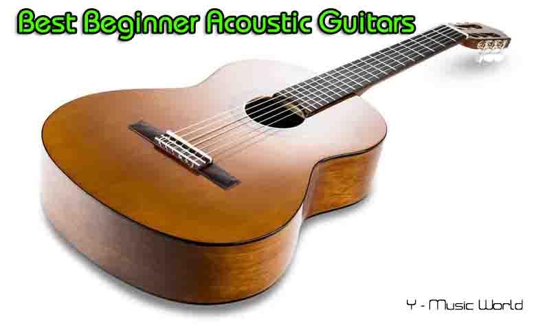 Best Beginner Acoustic Guitars