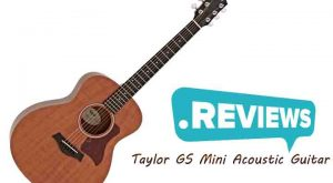 Taylor Guitars, Acoustic