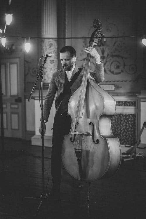 what is the Double bass
